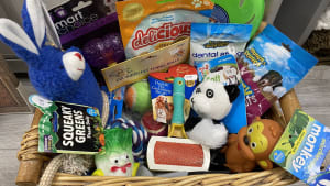 Dog Hamper Raffle