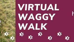 Virtual Waggy Walk